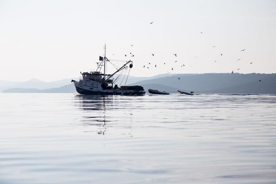 island_life_in_croatia_on_molat