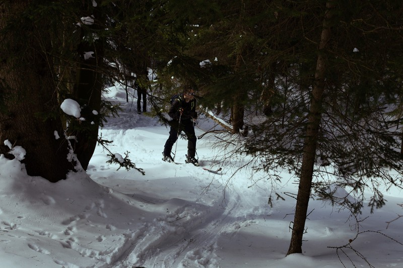 Winter adventure in Slovenian forest