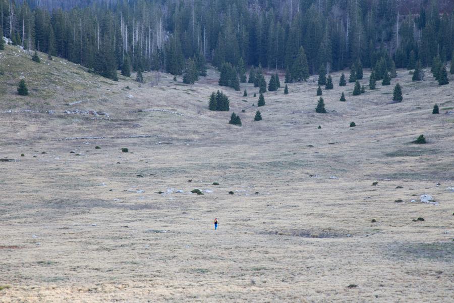 velebit_pastures