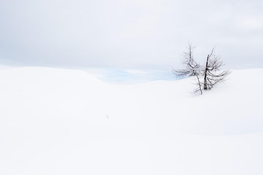 powders snow view